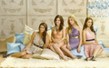 pretty-little-liars-tv-show - Pretty little liars :D wallpaper