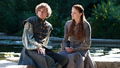 Sansa Stark &amp; Loras Tyrell - sansa-stark photo