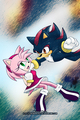 Shadow and Amy - sonic-the-hedgehog fan art
