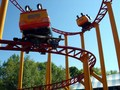 Spinning Dragons - rollercoasters photo