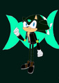 Splice the hedgehog  - sonic-fan-characters photo