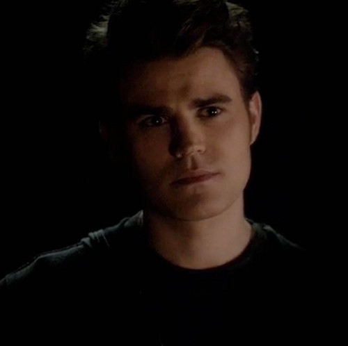 Stefan Salvatore wolpeyper with a portrait titled Stefan Salvatore ~