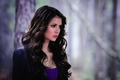 Still 4.22 - THE WALKING DEAD - katherine-pierce photo