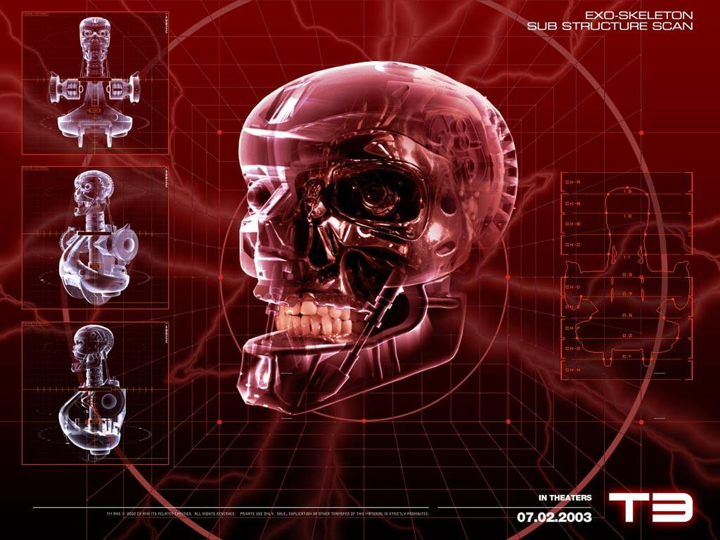 T3 - Terminator Wallpaper (34430686) - Fanpop