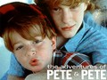 The Adventures of Pete &amp; Pete - the-adventures-of-pete-and-pete wallpaper