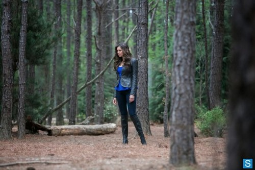 The Vampire Diaries - Episode 4.22 - The Walking Dead - Promotional ছবি