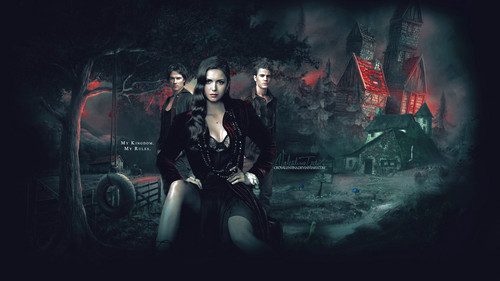 The Vampire Diaries wallpaper containing a concert and a guitarist titled The Vampire Diaries