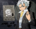 Toshiro - bleach-anime photo