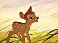 Walt Disney Screencaps - Bambi - walt-disney-characters photo