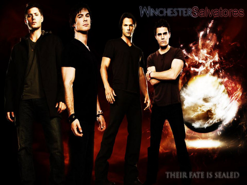 Winchesters & Salvatores
