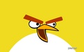 Yellow Bird - angry-birds photo