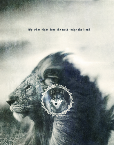 দ্বারা what right does the নেকড়ে judge the lion?