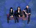 lost girl wallpaper - lost-girl photo