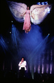 michael - michael-jackson photo