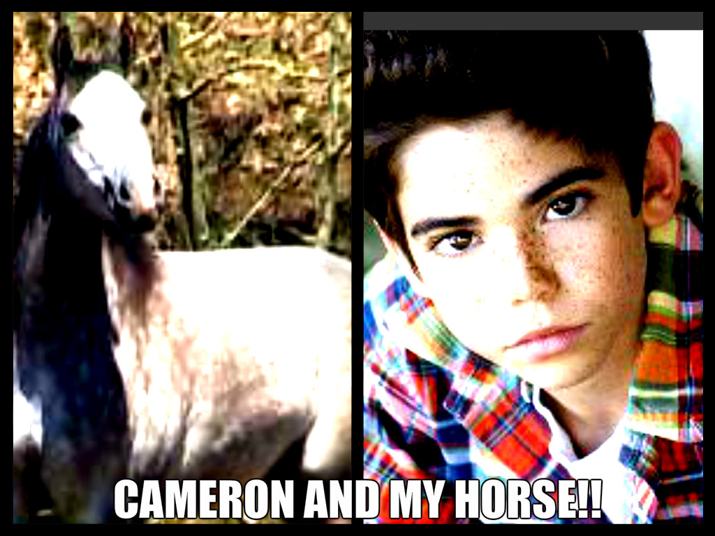 my horse and cameron!!