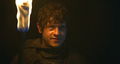 ramsay - house-stark photo