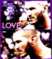 renee - randy-orton fan art