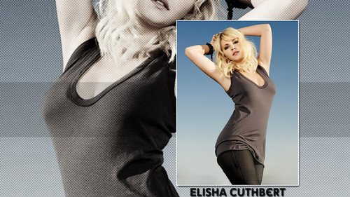 Elisha Cuthbert پیپر وال with a bustier, a maillot, and a leotard titled Elisha Cuthbert