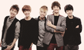 ♥Five years shining ~ Five years with 5HINee~♥ - shinee photo