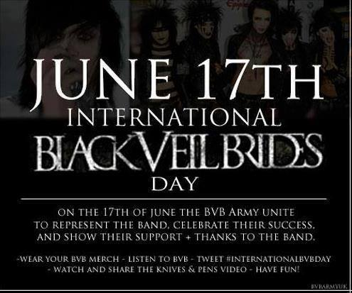 ★ June 17, 2013 International BVB Day ☆