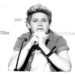      - niall-horan icon