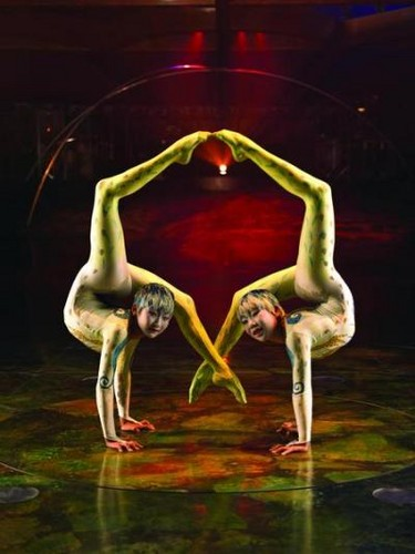 Cirque du Soleil پیپر وال titled Alegria contortion act, taruka