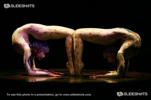 Cirque du Soleil वॉलपेपर entitled Alegria contortion act, taruka