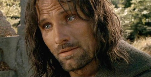 Aragorn fondo de pantalla possibly with a portrait titled Aragorn in the Fellowship of the Ring