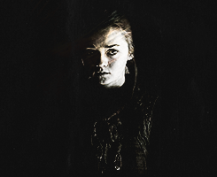 Arya and Gendry wallpaper possibly with a concert titled Arya&Gendry ; A Storm of Swords