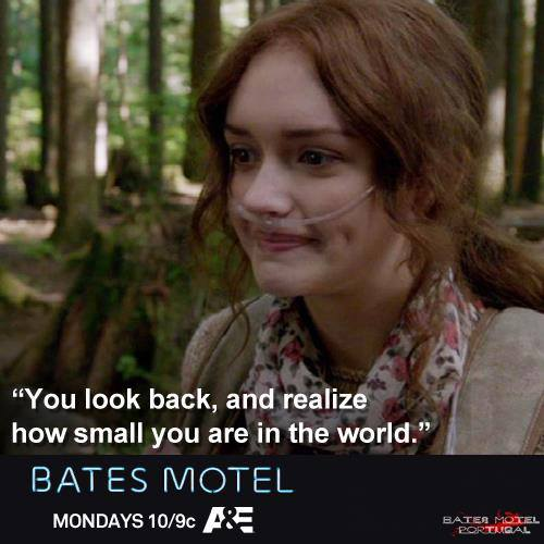 Bates Motel achtergrond with a portrait called Bates Motel Quotes