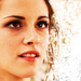 Beautiful Bella Swan - bella-swan icon