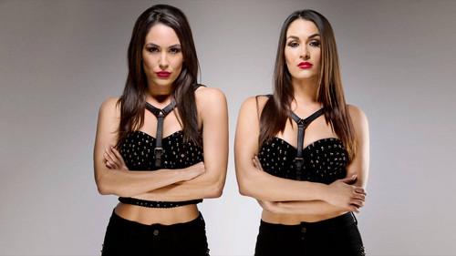 Bella Twins