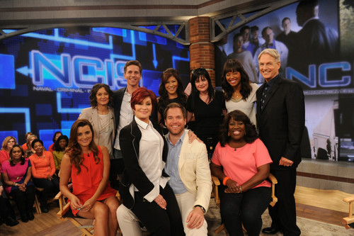 Cote de Pablo achtergrond possibly with a business suit entitled Cote de PAbl and the NCIS cast on The Talk - 5/14/13