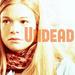 Dead Like Me - dead-like-me icon