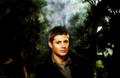 Dean Winchester - supernatural fan art