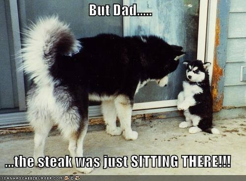 Don't eat mah Steak!