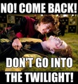Don't go to Twilight - harry-potter fan art