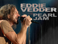 Eddie wallpaper - eddie-vedder wallpaper