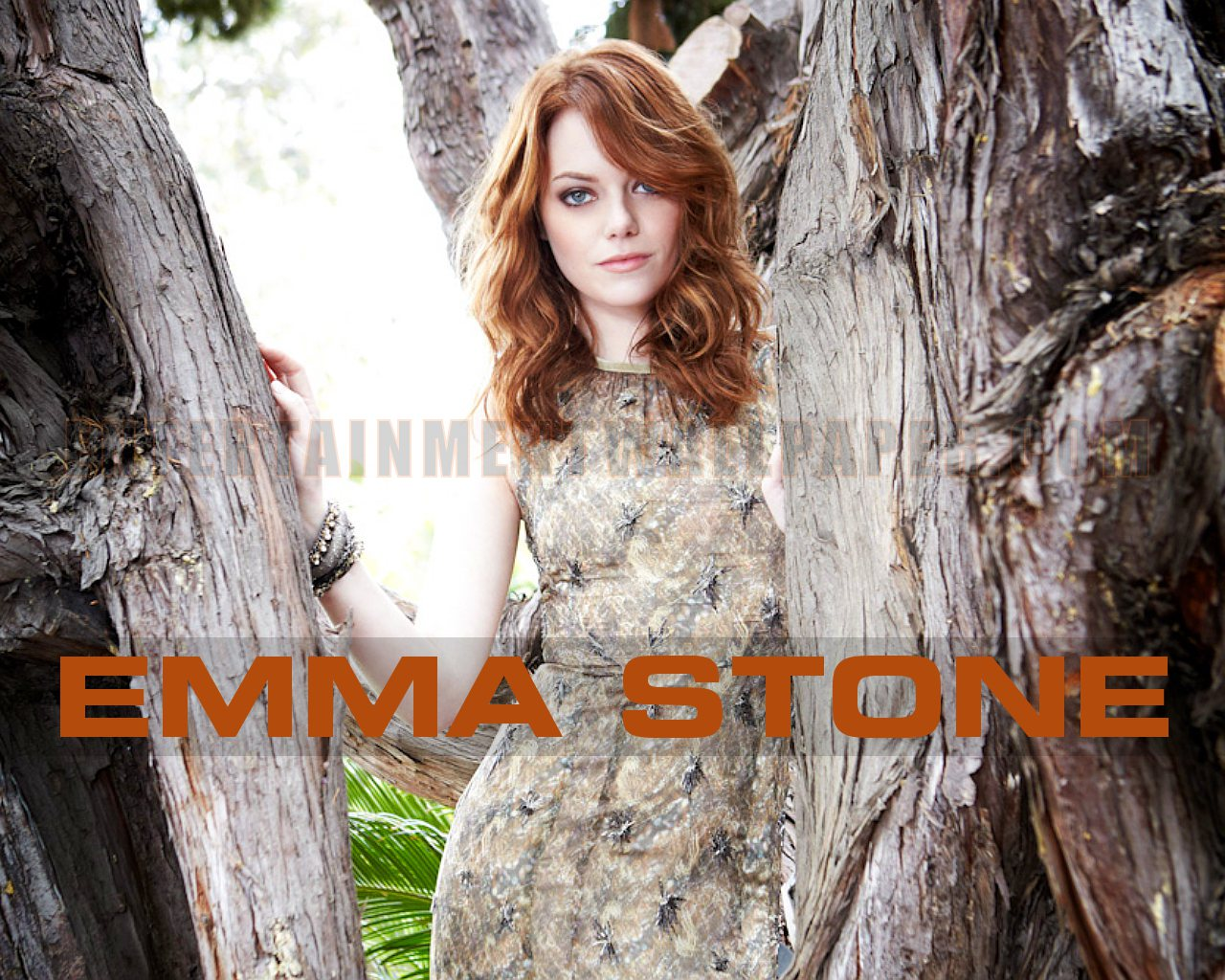 Emma Stone Images Emma Stone Hd Wallpaper And Background Photos
