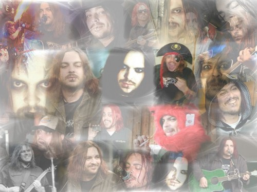 Fading Shaun Collage