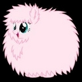 Fluffle Puff - my-little-pony-friendship-is-magic photo