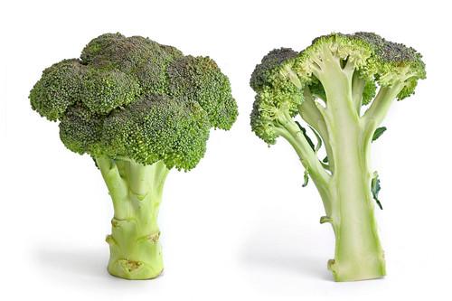 Green broccoli, broccolo
