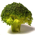 Green Broccoli - colors photo