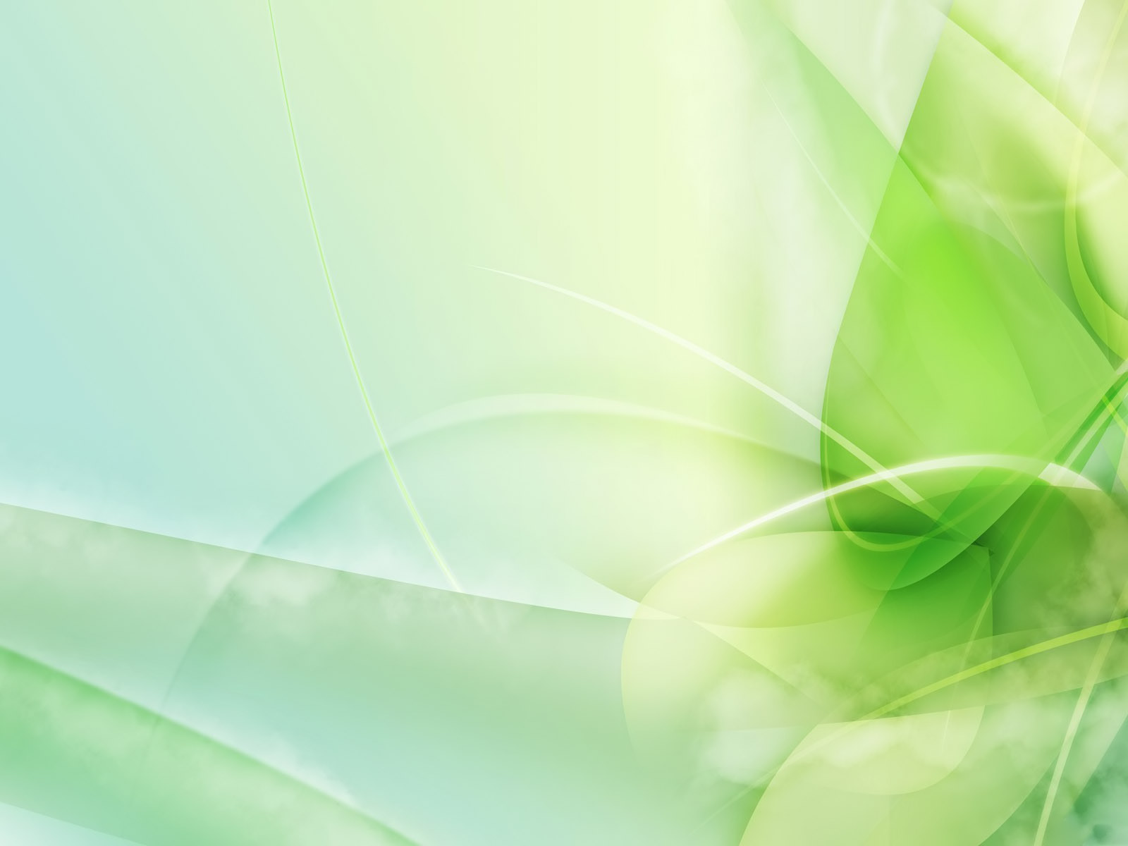 Green Wallpaper  Colors 34511115 Fanpop