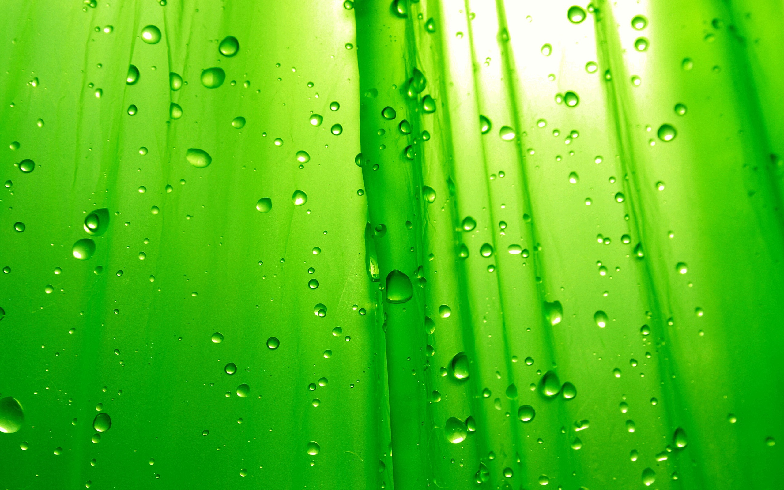 Green wallpaper colors wallpaper 34511131 fanpop - Wallpaper photos ...