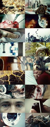 Hannibal + Close-ups