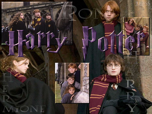 Harry,Ron And Hemione