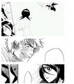 How Ichigo and Rukia look at each other  - anime photo