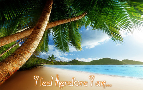 I feel therefore I am...