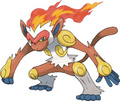 Infernape - pokemon photo